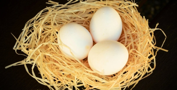Egg - Poltery | ডিম - পল্ট্রি