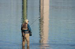 Fisherman at the Narrows