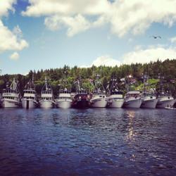 The Gig Harbor Fleet