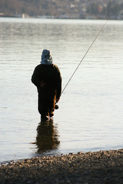 Gig Harbor Fisherman