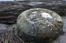 Fox Island Sandspit Tire