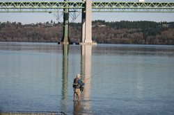 Fly Fishing by the Narrows