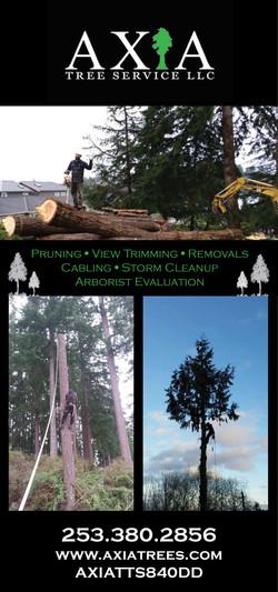 Axia Tree Ad 1