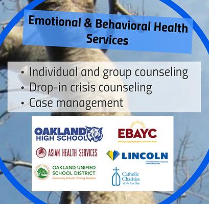 emotional & behavioral health services.p