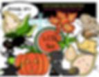 little pumpkin.png