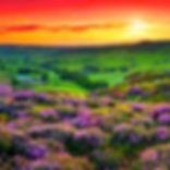 Landscape_edited.jpg