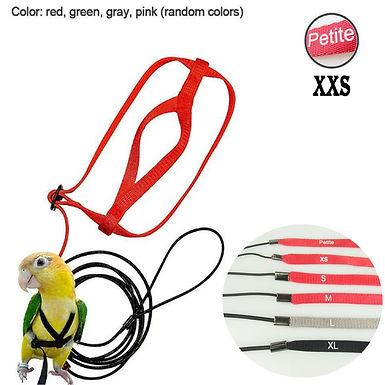 Adjustable Parrot  Harness &  Leash Anti-Bite Training Harness