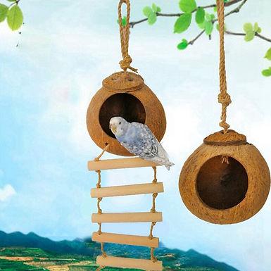 Natural Coconut Hideaway Hut