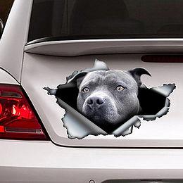 3D Blue Pitbull Dog Car  Decal