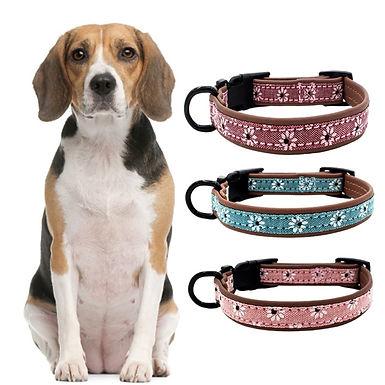 Adjustable Super Cute Designer Pet Collars Personalized Dog Collars