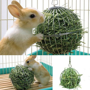 Food Ball Stainless Steel Plating For Rabbits Gini pigs Small Animals