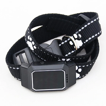 Dog Smart Collars Smart Feeders & Devices