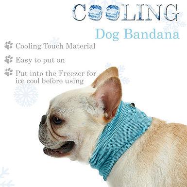 Cool Summer Dog Cooling Bib