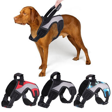 Traction Chest Harness Adjustable Comfortable Durable Dog Harness