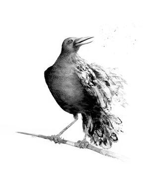 Raven Runes.jpg