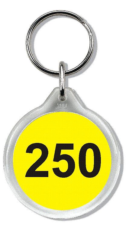 SP2 Clearview Keyring - 33mm Diameter