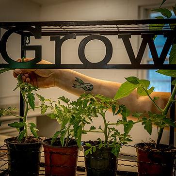 Grow-28.jpg