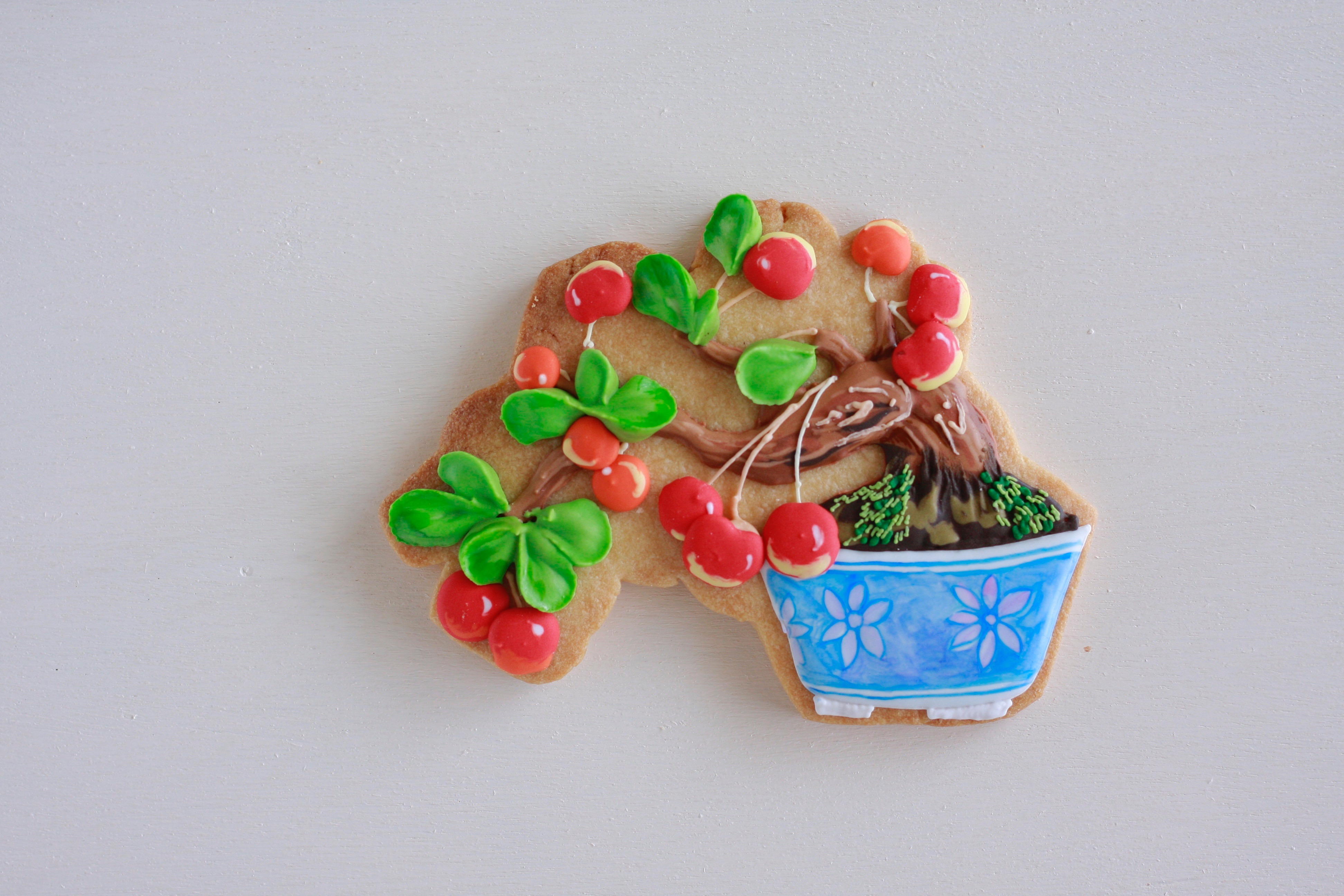 盆栽アイシングクッキー(さくらんぼ)