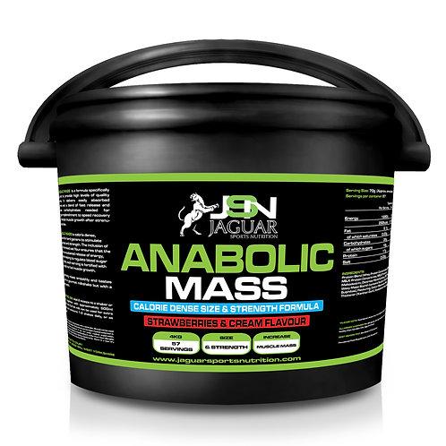 JSN ANABOLIC MASS 4.5kg