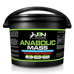 Anabolic Mass.png
