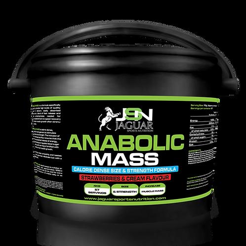 ANABOLIC MASS 4.5KG