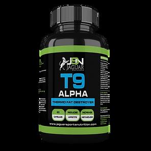 large-t9-alpha.png