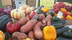 Farmers Market4