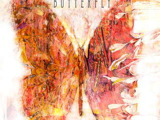 'Butterfly' now available to download from iTunes