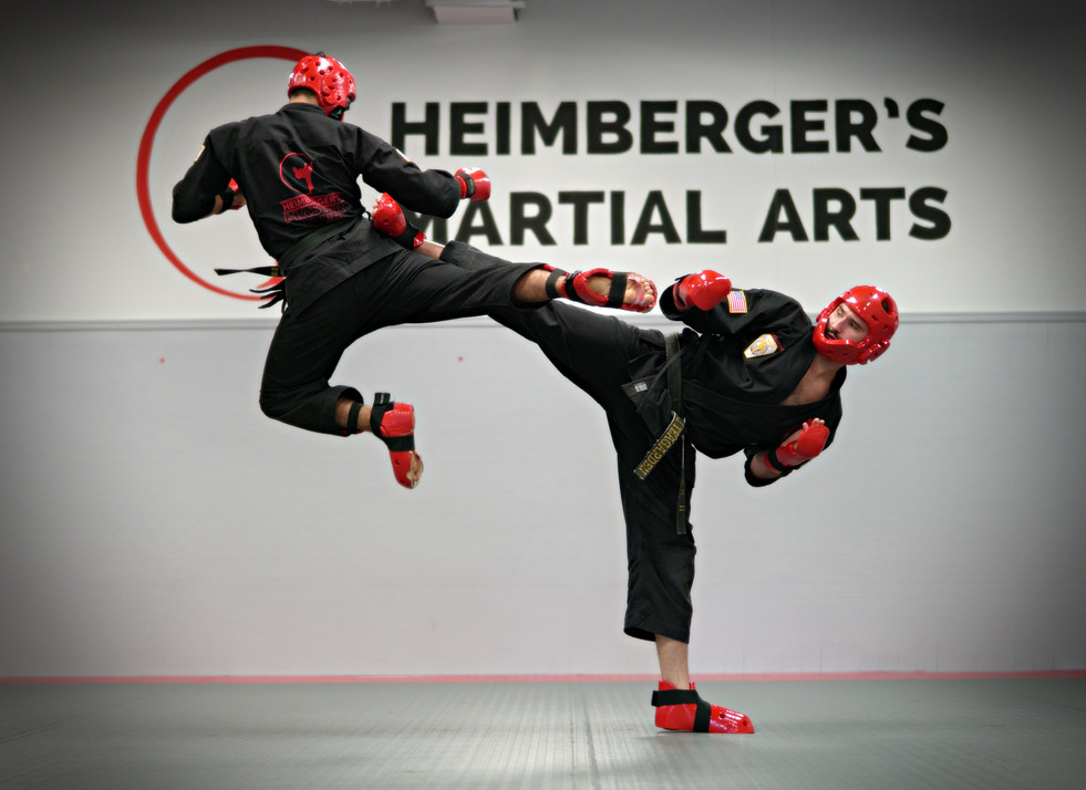 martial arts wesley chapel