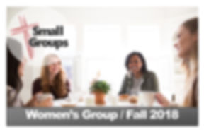 2018 Fall Small Group - Womens.jpg