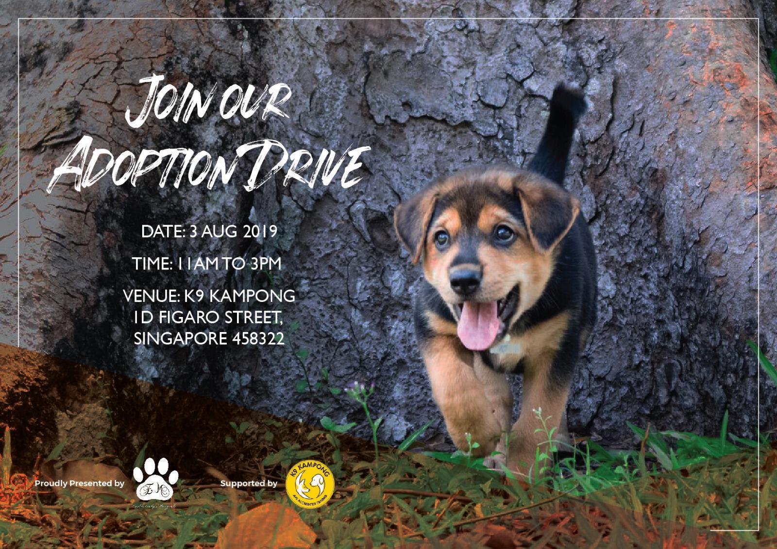Adoption Drive @K9 Kampong