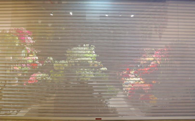 Perforated Roller Shutter _ flower shops