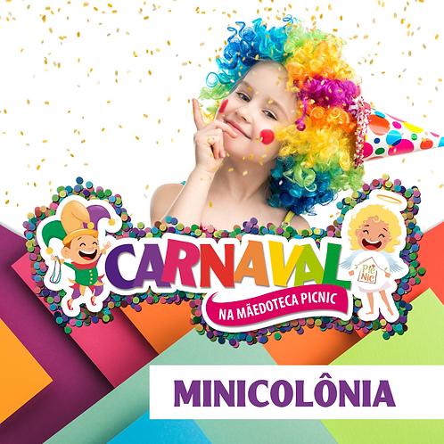 Colônia de Carnaval - Diária Avulsa