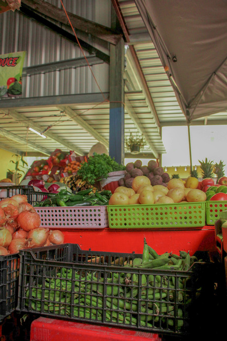 The Azteca Market has recently opened to the community around it. It gives people the chance to go get their fresh produce at a low price, for great quality