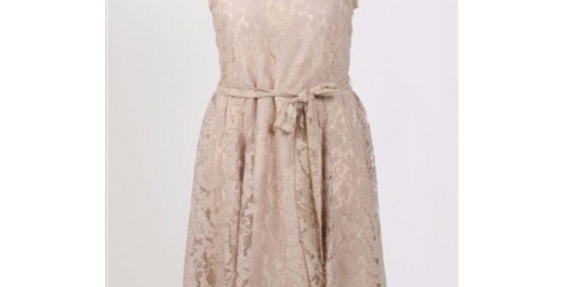 AJ4F224 - Julian Taylor Lace Dress