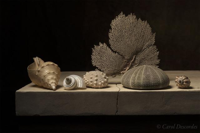 carol-descordes-gorgone