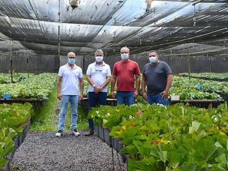 Secretário Canavieiras visita Biofábrica