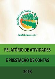 CAPA_RELATÓRIO_ANUAL_2018.jpg