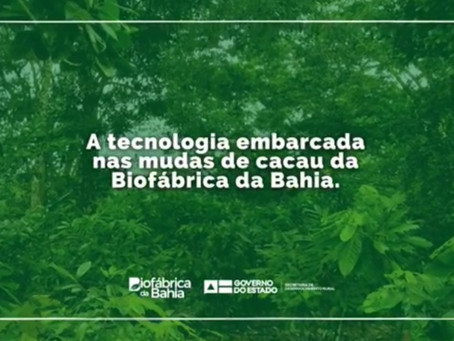A tecnologia embarcada nas mudas da Biofábrica