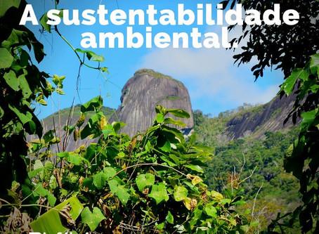 A sustentabilidade ambiental