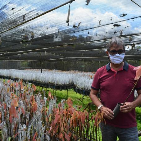 Biofábrica 22 anos: Pacote de obras garante otimização da produção de mudas