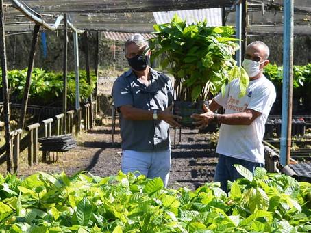 No mês do cacau, a Biofábrica da Bahia distribuiu 46 mil mudas a agricultores familiares!