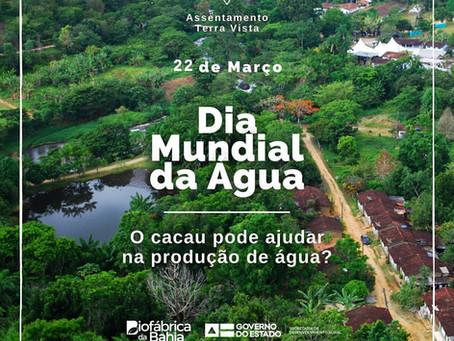 22 Março Dia Mundial da Água