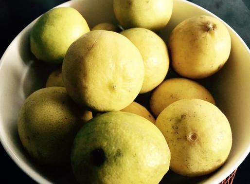 Tips for storing lemons in abundance.