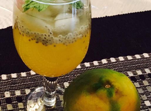 Homemade Orange Sherbet or Squash