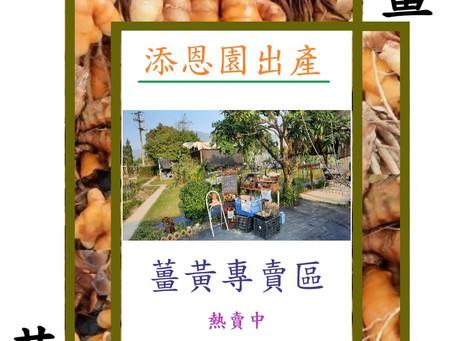 薑黃: 添恩園出產冬季名物