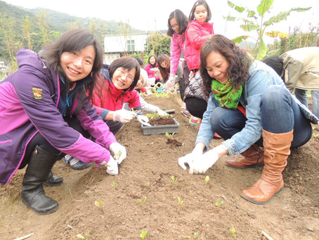 有機耕作怎樣施肥與防蟲?