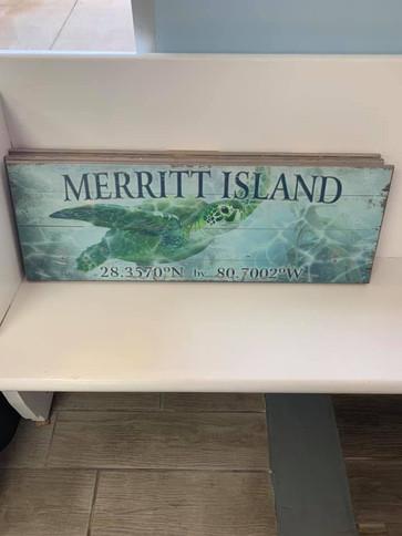 Flag (Merritt Island - Sea Turtle)
