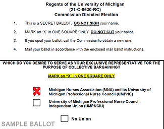 sample ballot with x .png