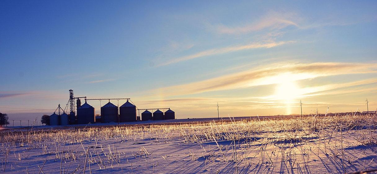 winter farm.jpg
